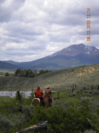 Granite Mountain Outfitters: 1 hour Horseback Ride