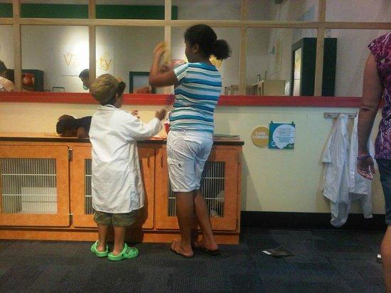 Glazer Children's Museum : Desde el Interior.