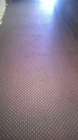 Days Inn Birmingham AL: Clean Carpet. 2014