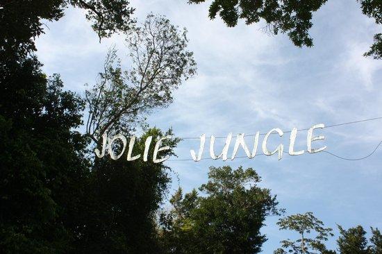 Jolie Jungle
