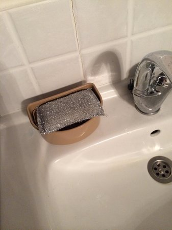 Royalty Suites: Sponge for dishes in the sink where you wash your teeth