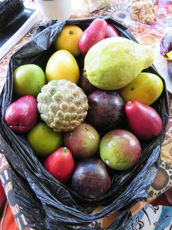 Nature Roots : local organic fruit!