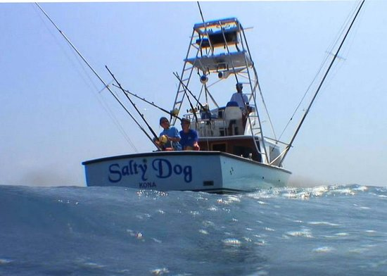 Salty Dog Sportfishing - Private Charters