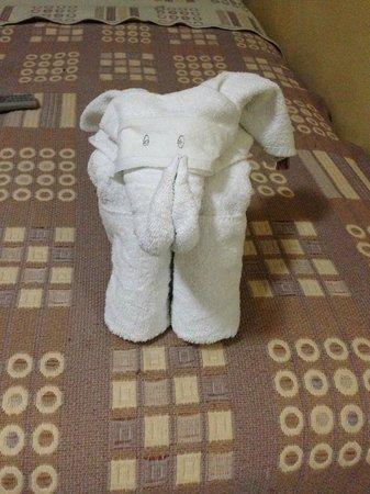 Hotel del Peregrino : Towels