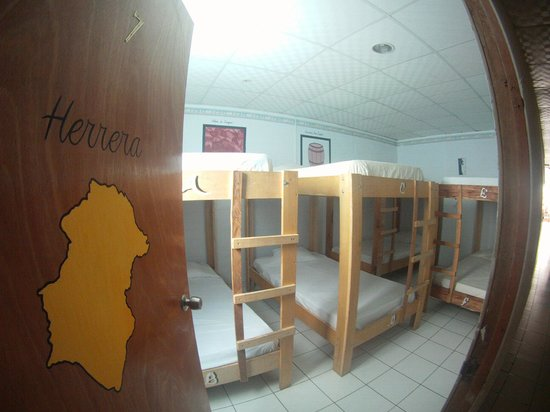 Hostal Caribbean Lodge: Dorm