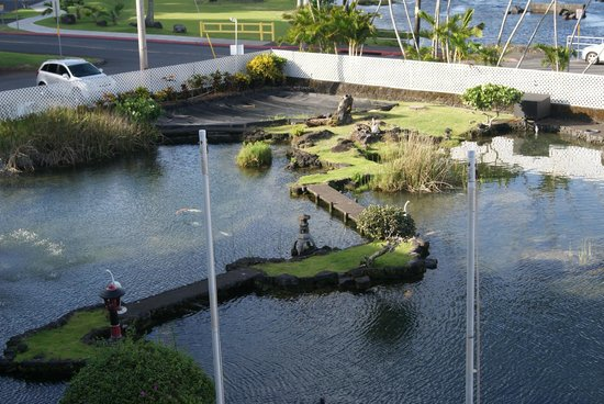 Hilo Seaside Hotel: View of the Koi pond from the room