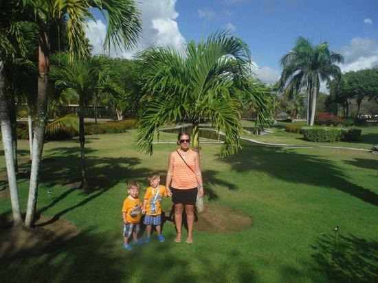 Sirenis Punta Cana Resort Casino & Aquagames : front gardens