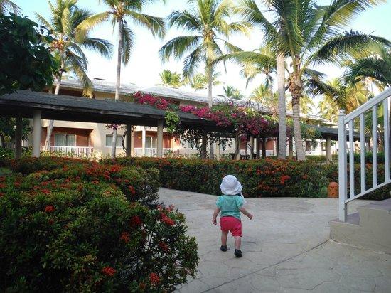 Sirenis Punta Cana Resort Casino & Aquagames: walk from our room to main walkway