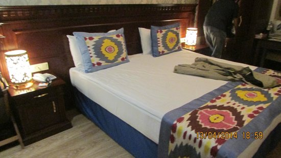 The Magnaura Palace: Excellent Room setting