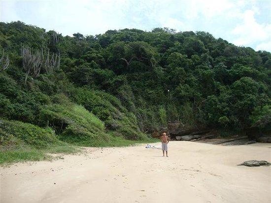 Praia Canto : mucha vegetaciòn