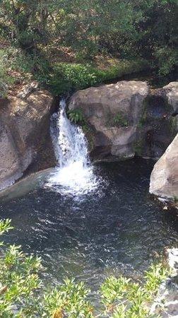 Hacienda Guachipelin: cascade