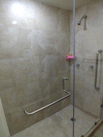 Fiesta Inn Oaxaca: Remodelación del baño.
