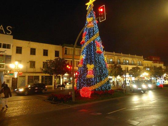Calle San Miguel: Arbol navideño junto a C/ San Miguel