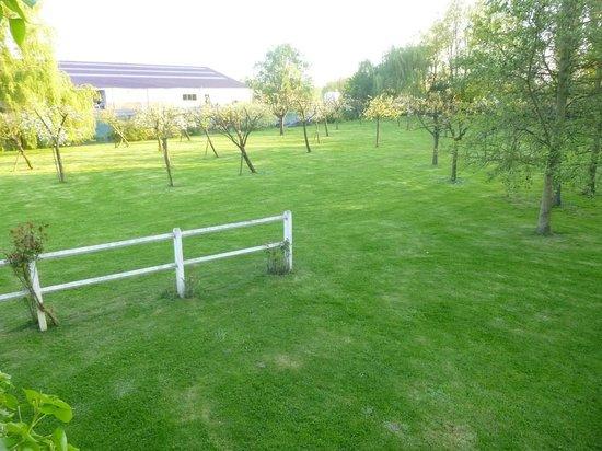 Domaine du Haut Ballot : jardin