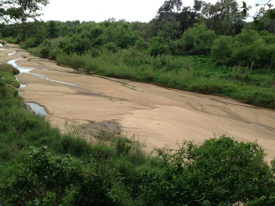 Kuname Lodge : View of the riverbed from room 5