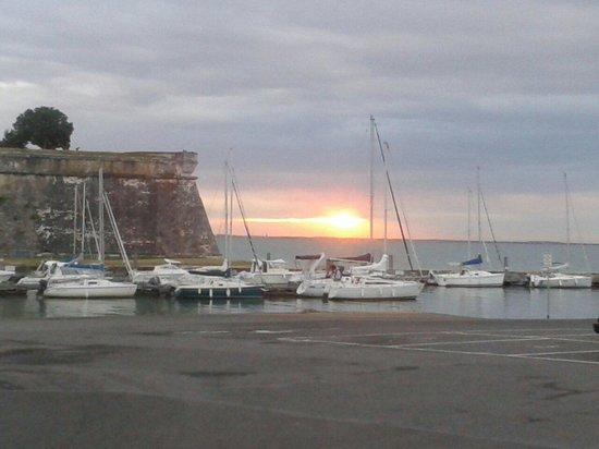 restaurant du port : Ne pas louper le levé de soleil avec un petit café.