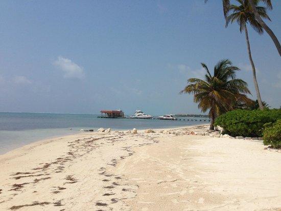 Coco Beach Resort: Beach view to left