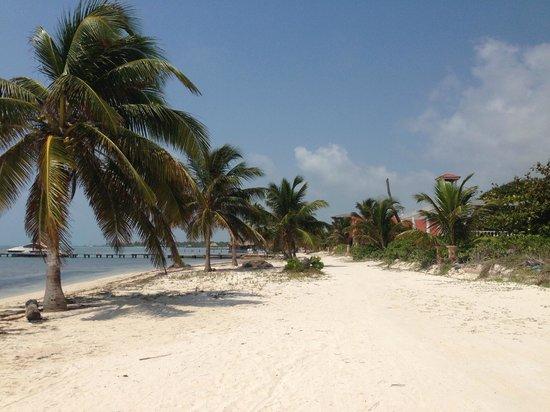 Coco Beach Resort : beach