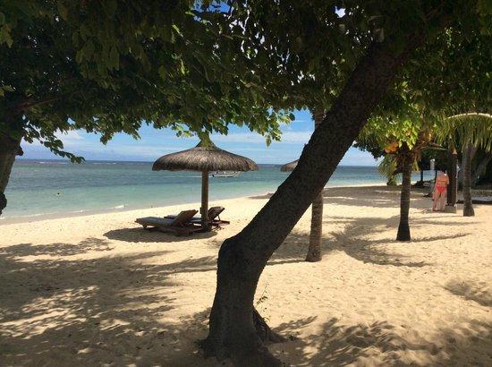 Maradiva Villas Resort and Spa: the dappled shade and sun on the beach made for a very beautiful scene