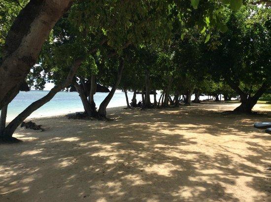 Maradiva Villas Resort and Spa: Lazy days on the beach