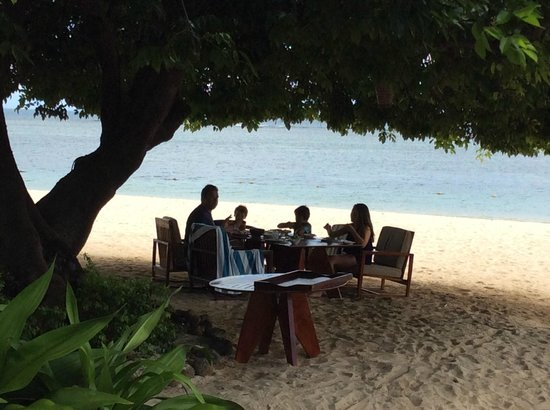 Maradiva Villas Resort and Spa: Eating Lunch under the magnificent tree by the pool on the beach