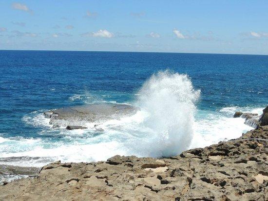 Arecibo Lighthouse & Historical Park: Océano Atlántico
