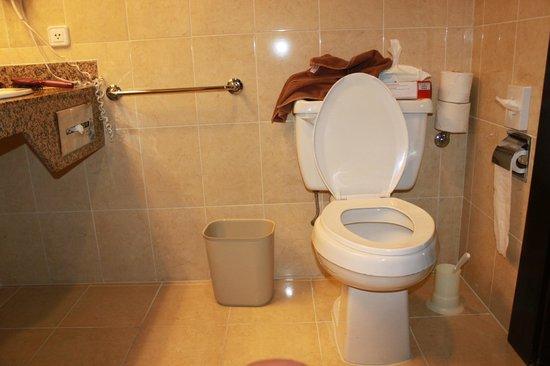 Hotel Riu Santa Fe: Accessible Washroom (in suite)