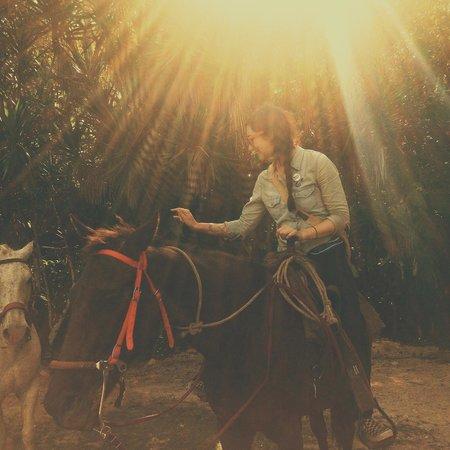 Martz Farm Treehouses and Cabanas Ltd.: Horseback