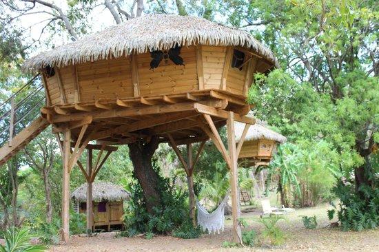 Habitation Getz : autre cabane
