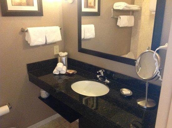 Best Western Premier Miami International Airport Hotel & Suites: bathroom