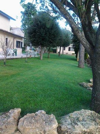 Hotel Poggio Bertino: il giardino