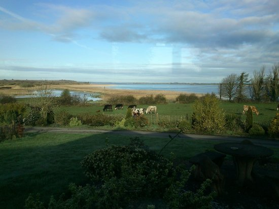 Inny Bay Bed And Breakfast: view