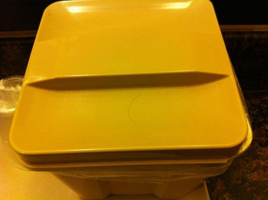 Quality Inn San Simeon: hair on ice bucket