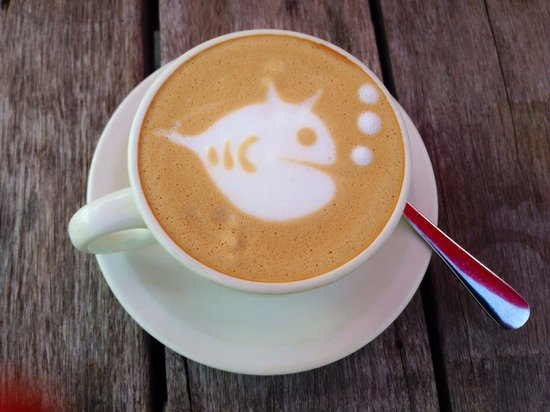 1904 Cafe : 1904 Coffee at the seashore with fishes. Cool Amy you are one talented Barista.