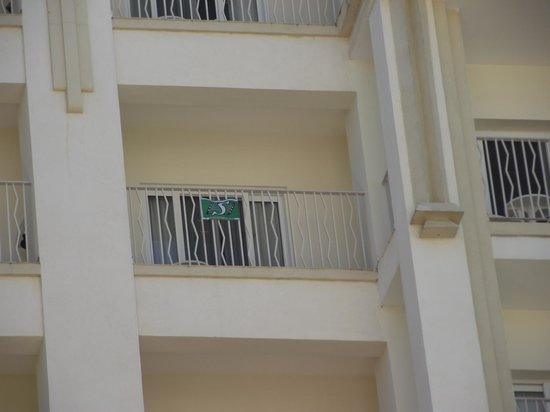 Hotel Riu Vallarta: Go Riders Go - Our Balcony 7062
