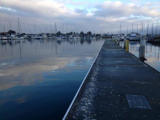 Hampton Inn Channel Islands Harbor: Public Docking area