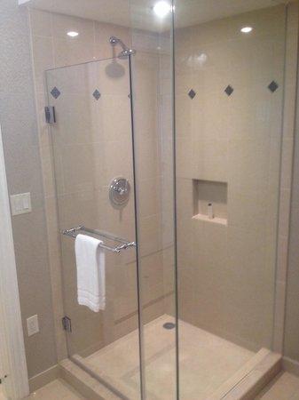 Waldorf Astoria Orlando: 1028 separate shower