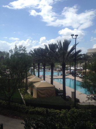 Waldorf Astoria Orlando: WA pool. Guest of WA can also use Hilton pool.