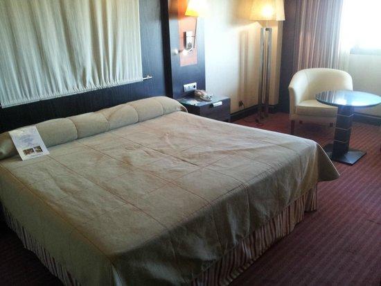 Hotel Cordoba Center : Camera 620