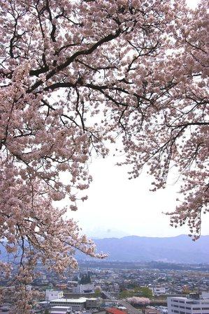 Kasuga Park: アルプスを臨みながら