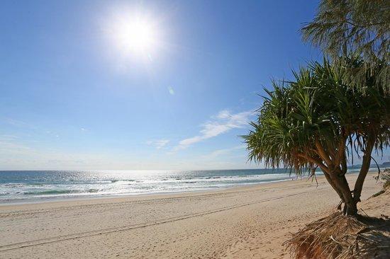 Neptune Resort: Local beach