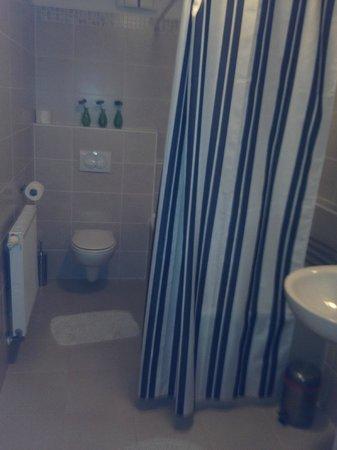 Senator Apartments Budapest: baño