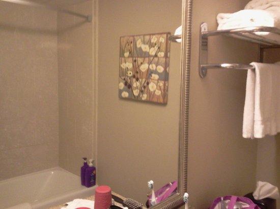 Country Inn & Suites By Carlson, Virginia Beach (Oceanfront) : bsthroom