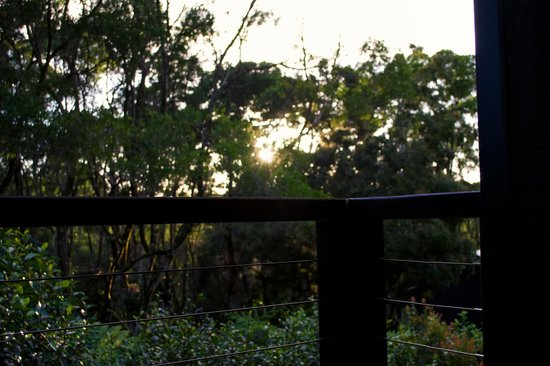 Spicers Tamarind Retreat: Sunrise from Deck