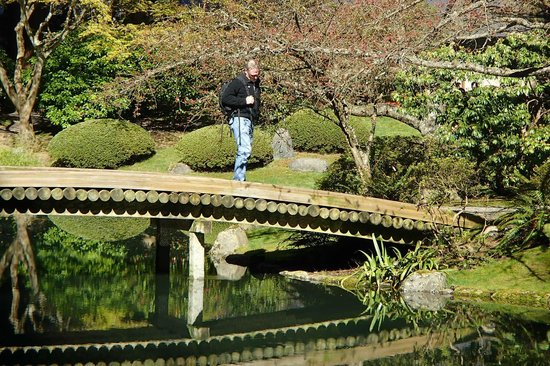 Rob on log bridge - Picture of Nitobe Memorial Garden, Vancouver ...