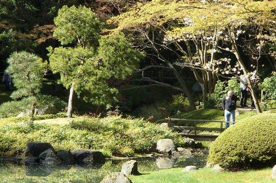 Nitobe Memorial Garden: views of garden