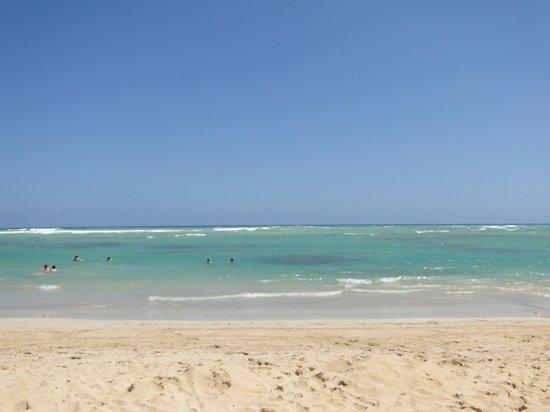Sirenis Punta Cana Resort Casino & Aquagames : Praia do Hotel