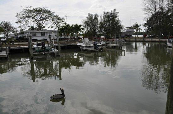 Parkway Motel & Marina : Parkway Marina - Boat Slips Available