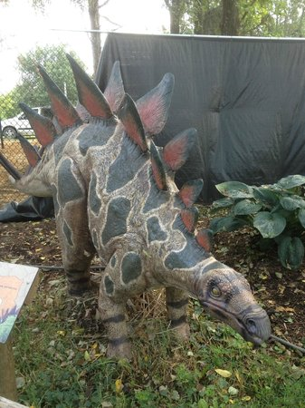 Clyde Peeling's Reptiland: One of the Dinosaurs Come to Life exhibit members.