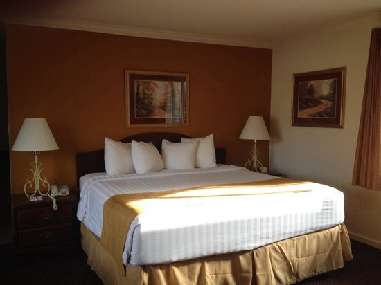 BEST WESTERN Twin Islands: Our room